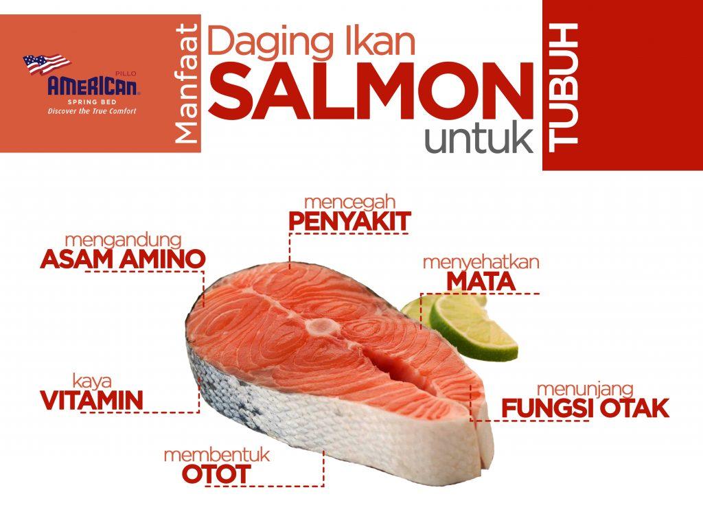 Manfaat Salmon bagi Tubuh